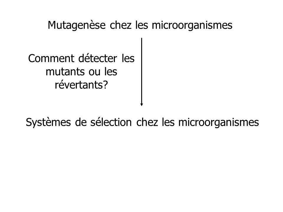 Mutagenèse chez les microorganismes