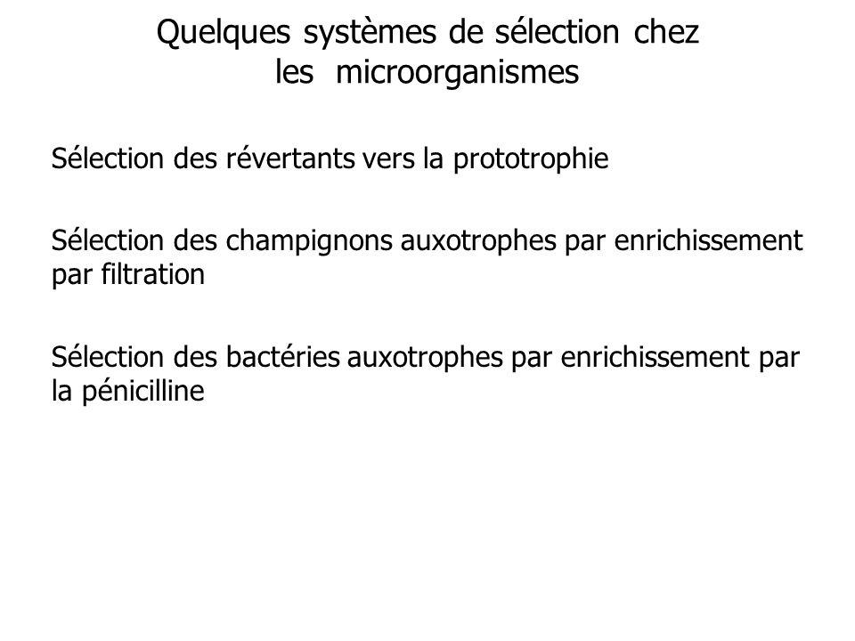 Quelques systèmes de sélection chez les microorganismes