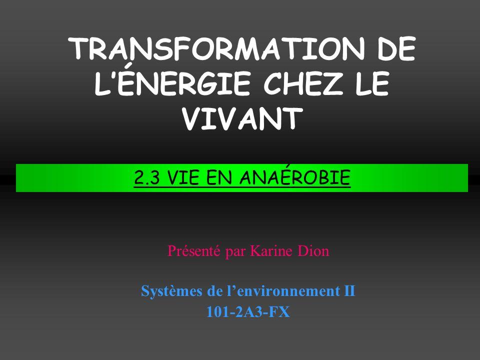 TRANSFORMATION DE L'ÉNERGIE CHEZ LE VIVANT
