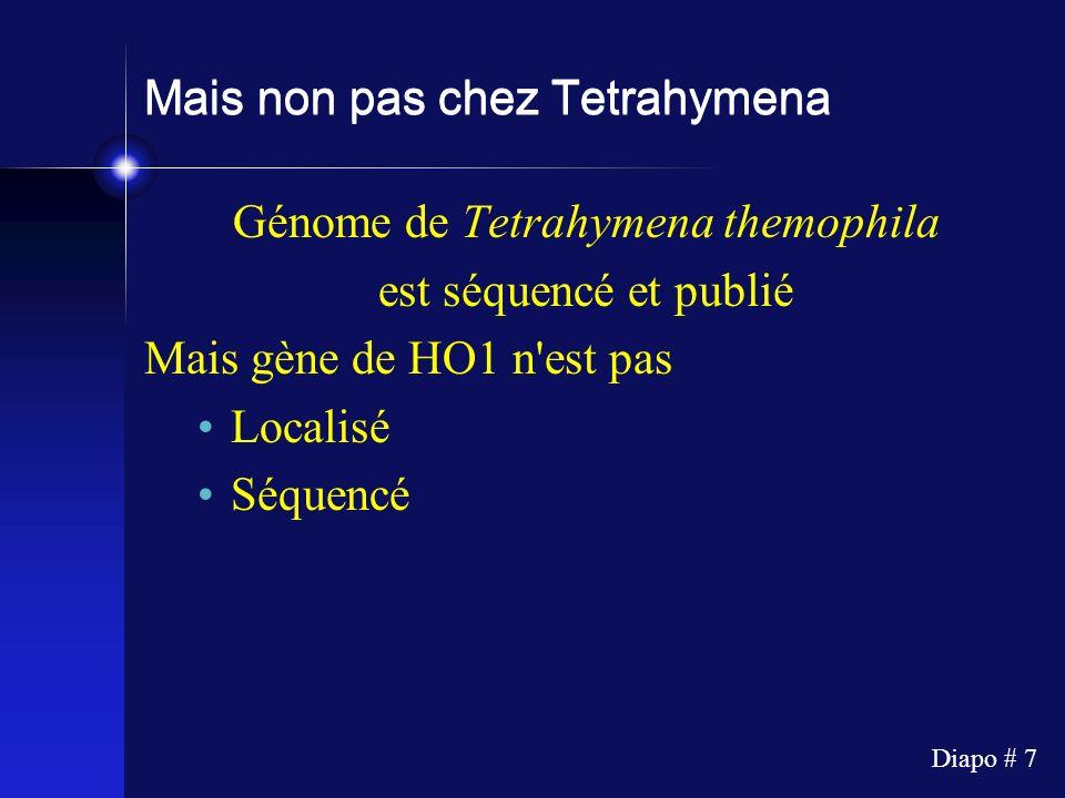 Mais non pas chez Tetrahymena