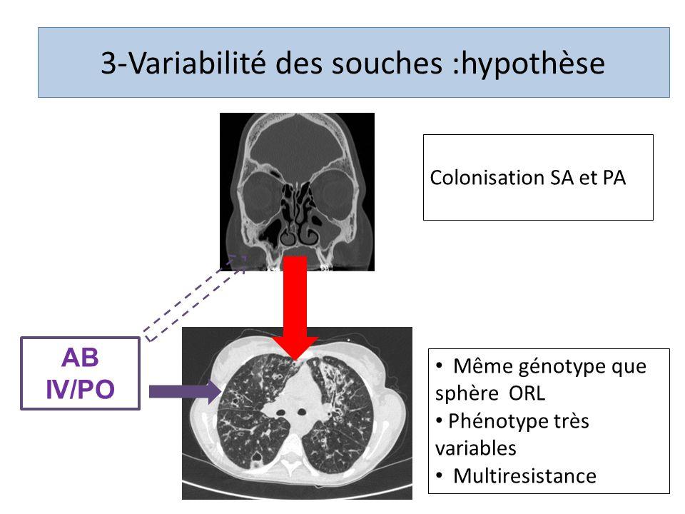 3-Variabilité des souches :hypothèse