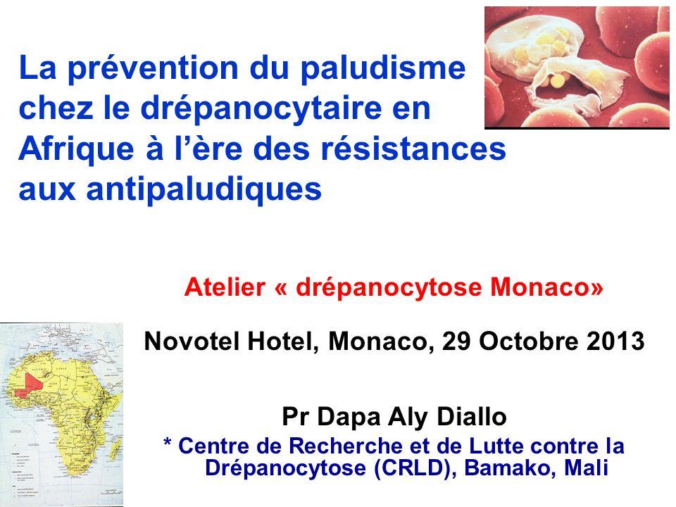 Atelier « drépanocytose Monaco» Novotel Hotel, Monaco, 29 Octobre 2013