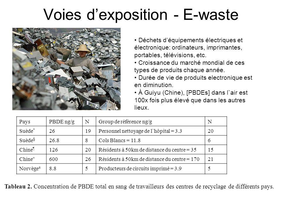 Voies d'exposition - E-waste