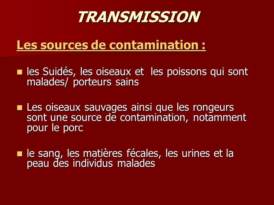 TRANSMISSION Les sources de contamination :
