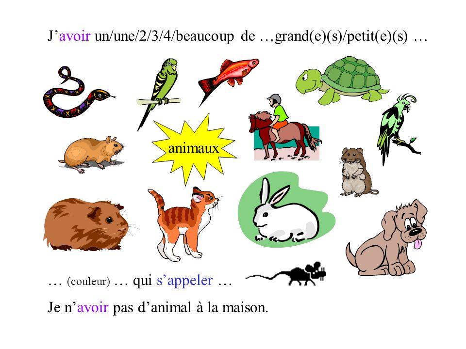 J'avoir un/une/2/3/4/beaucoup de …grand(e)(s)/petit(e)(s) …