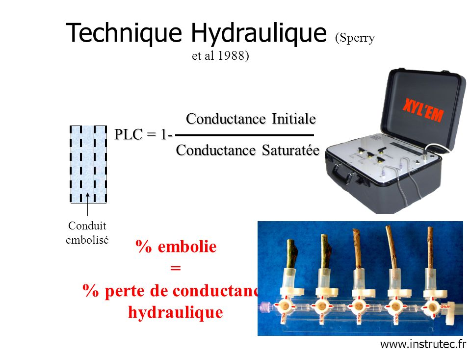% perte de conductance hydraulique