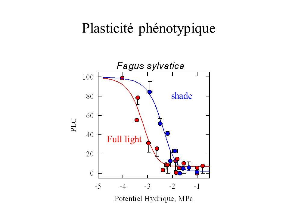 Plasticité phénotypique