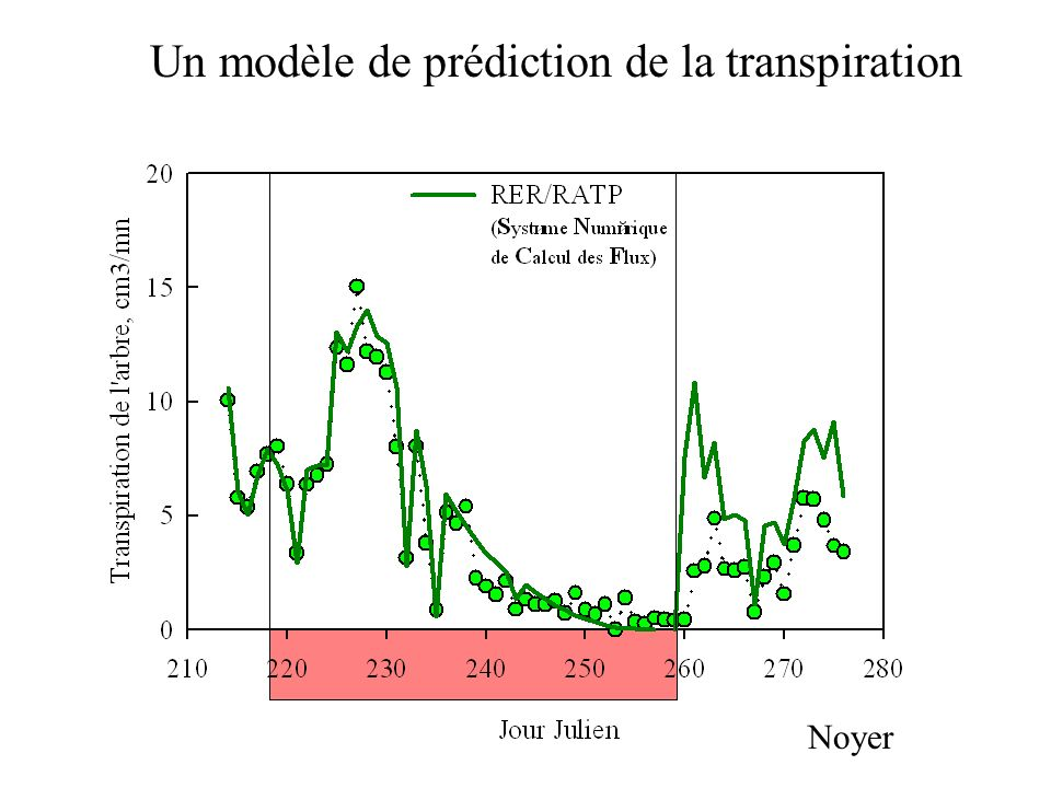 Un modèle de prédiction de la transpiration