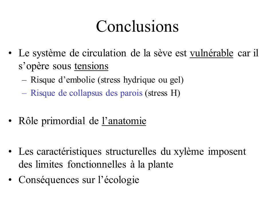 Conclusions Le système de circulation de la sève est vulnérable car il s'opère sous tensions. Risque d'embolie (stress hydrique ou gel)
