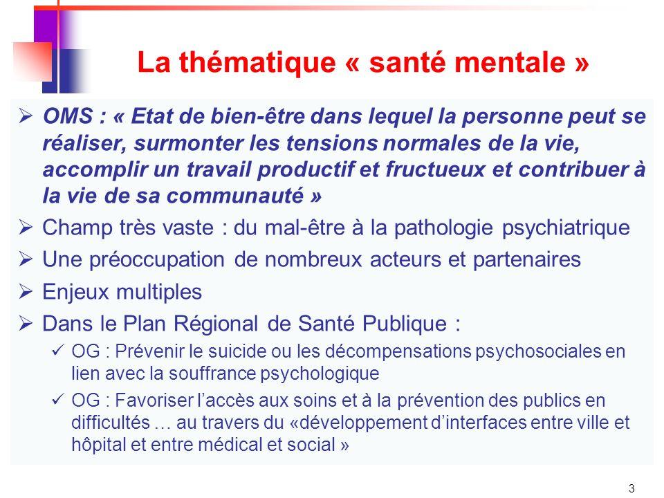 La thématique « santé mentale »