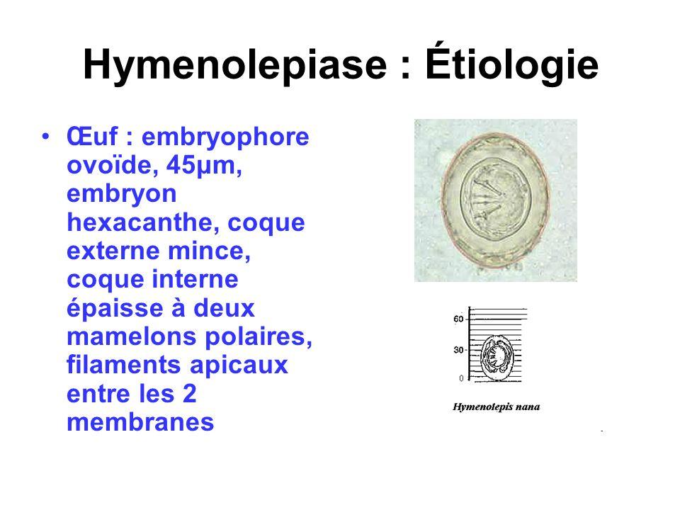 Hymenolepiase : Étiologie