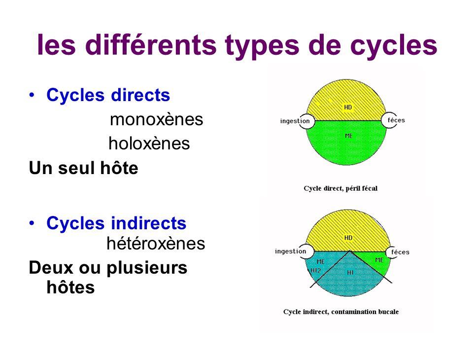 les différents types de cycles