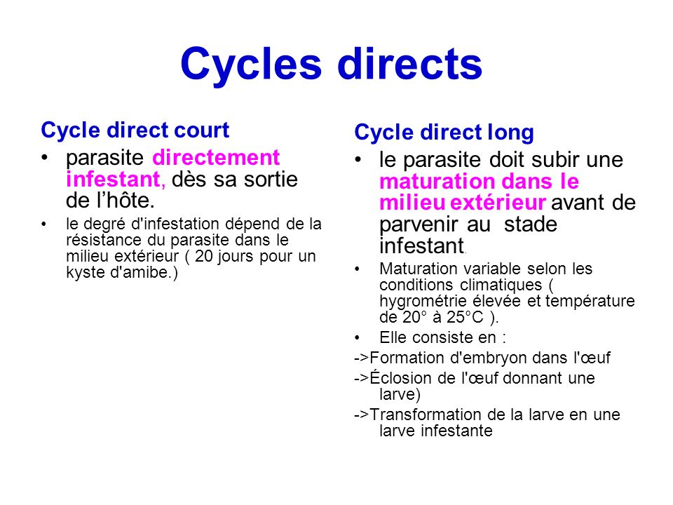 Cycles directs Cycle direct court Cycle direct long