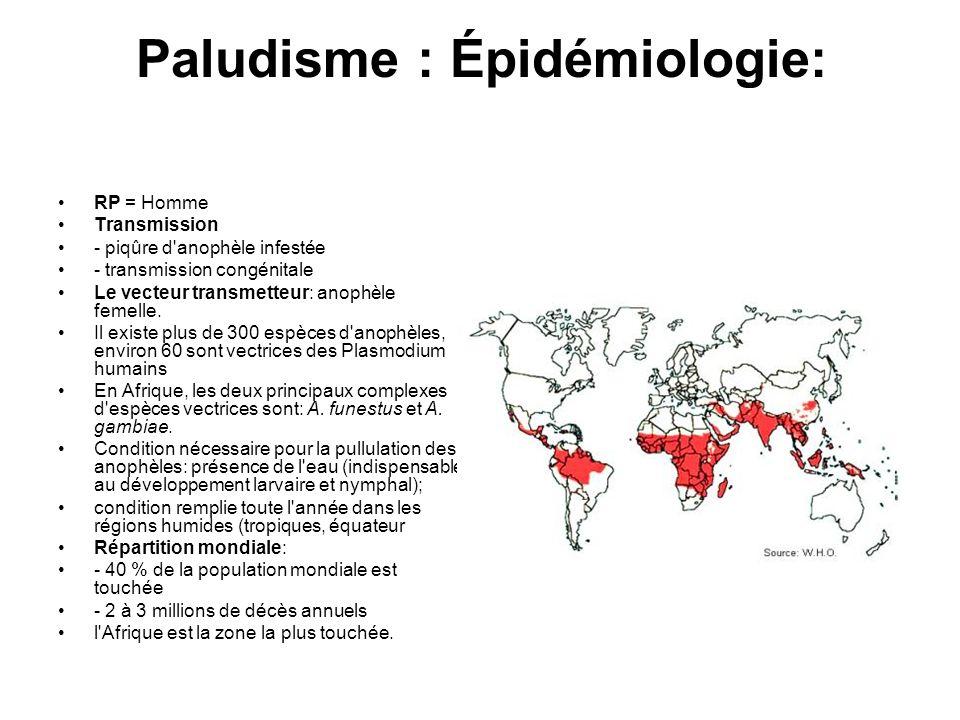 Paludisme : Épidémiologie: