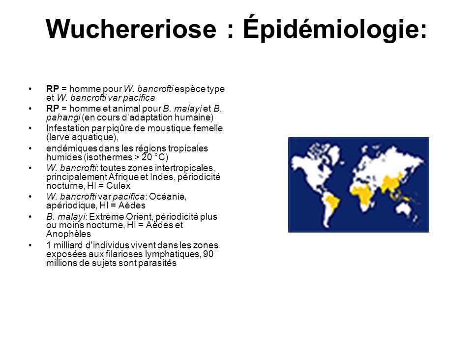 Wuchereriose : Épidémiologie: