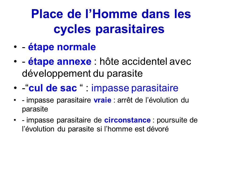 Place de l'Homme dans les cycles parasitaires