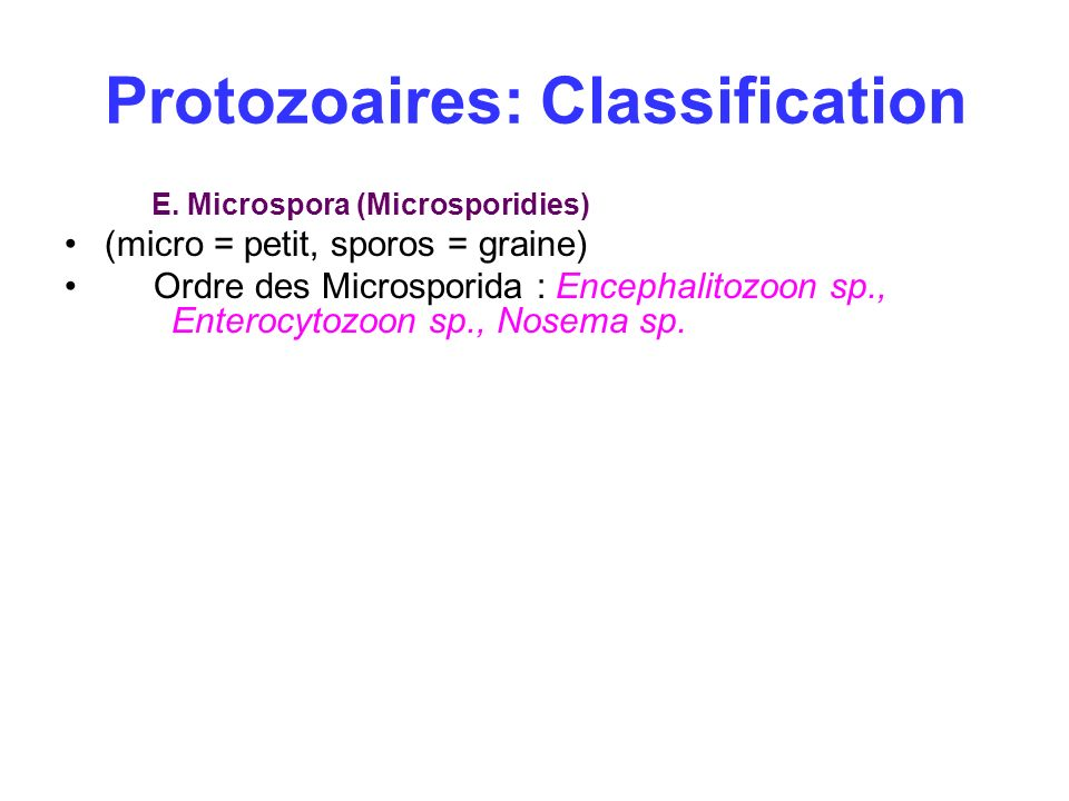 Protozoaires: Classification