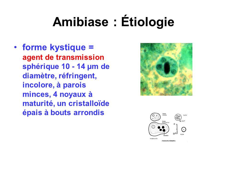 Amibiase : Étiologie