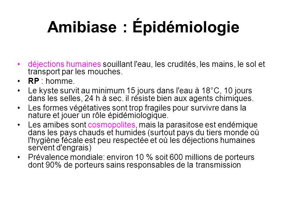 Amibiase : Épidémiologie