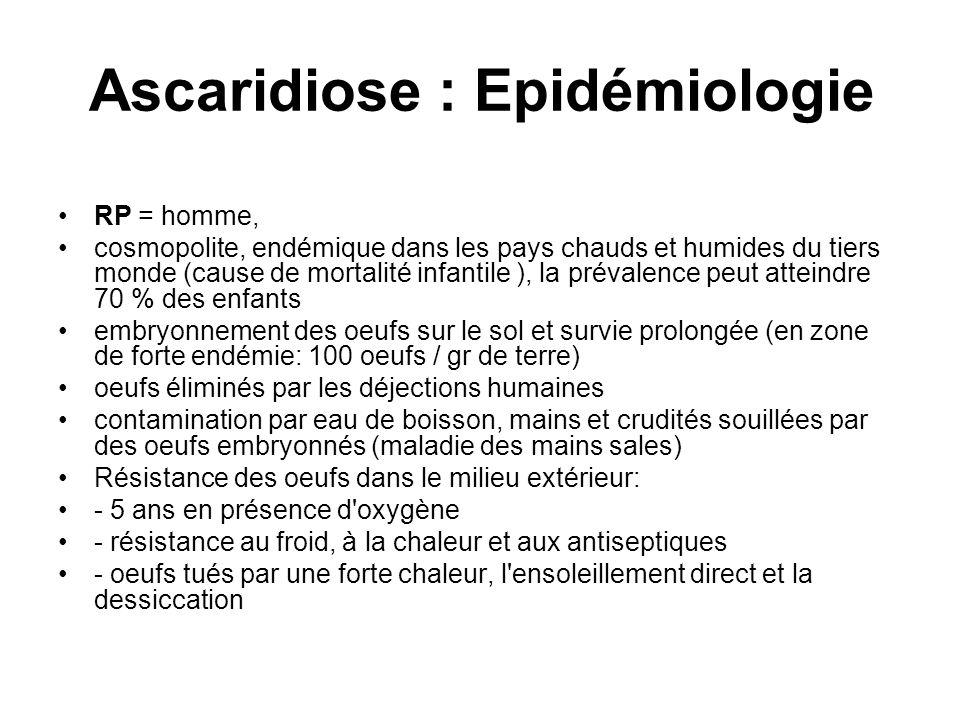 Ascaridiose : Epidémiologie