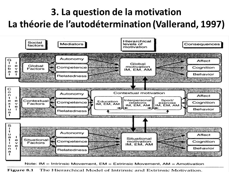 3. La question de la motivation La théorie de l'autodétermination (Vallerand, 1997)