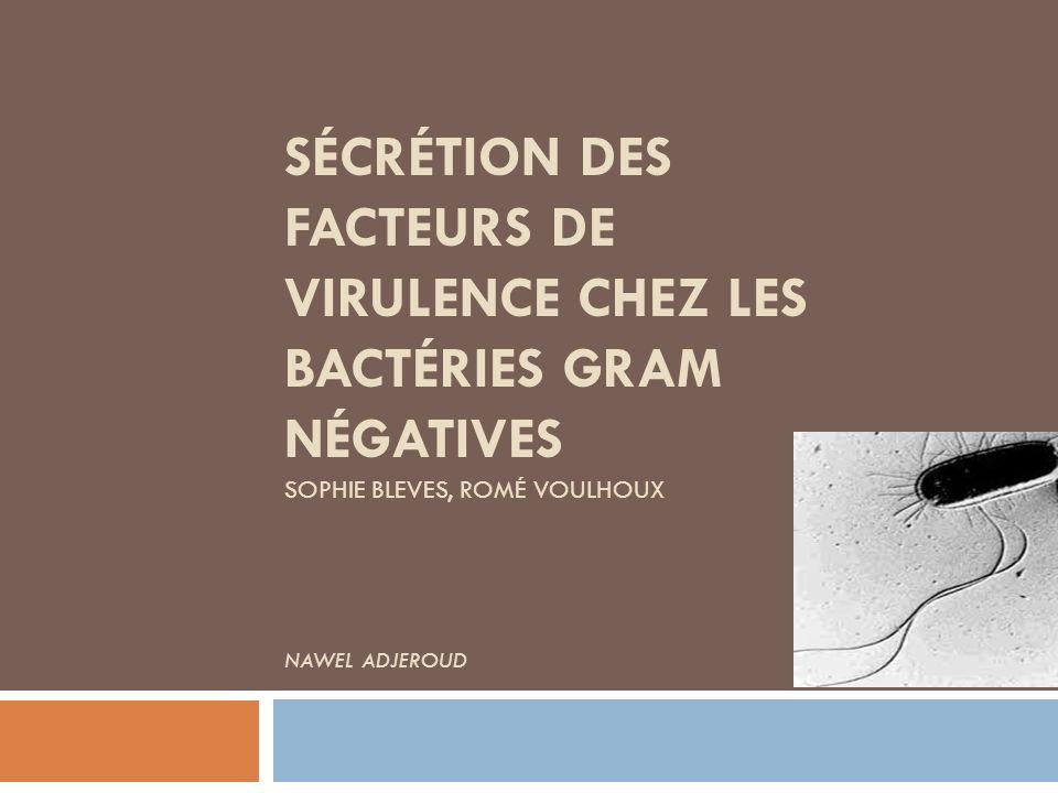 Sécrétion des facteurs de virulence chez les bactéries GRAM négatives sophie bleves, romé voulhoux nawel ADJEROUD