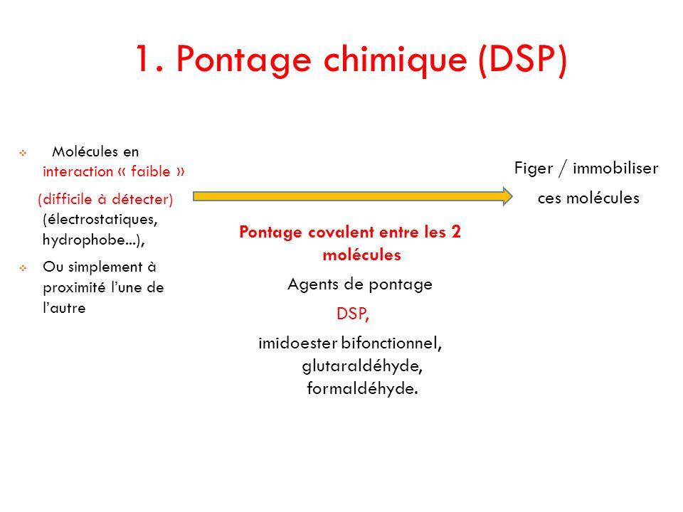 1. Pontage chimique (DSP)