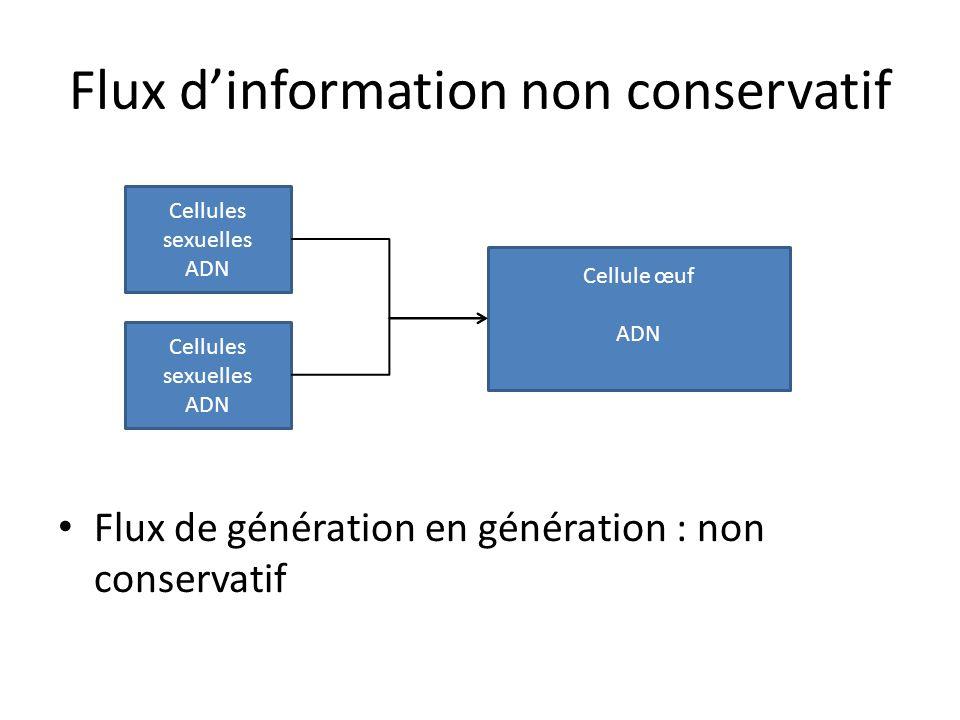 Flux d'information non conservatif