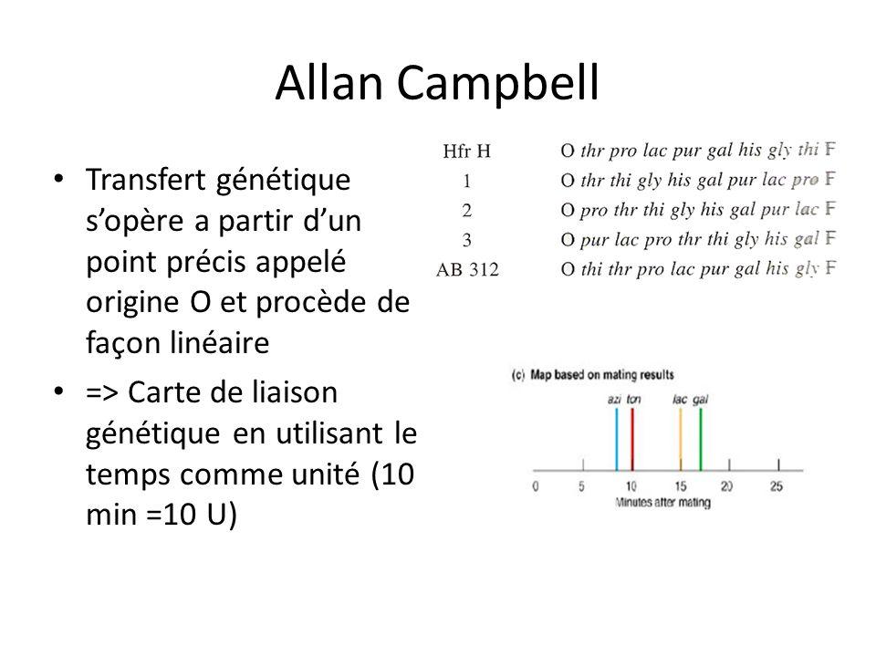Allan Campbell Transfert génétique s'opère a partir d'un point précis appelé origine O et procède de façon linéaire.