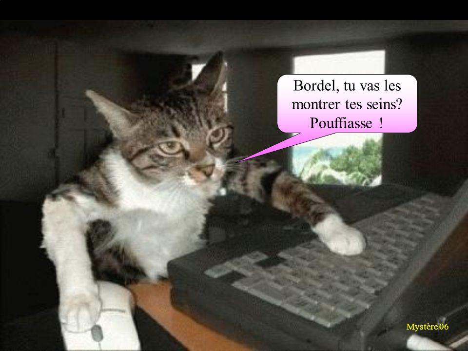 Bordel, tu vas les montrer tes seins Pouffiasse ! Mystère 06