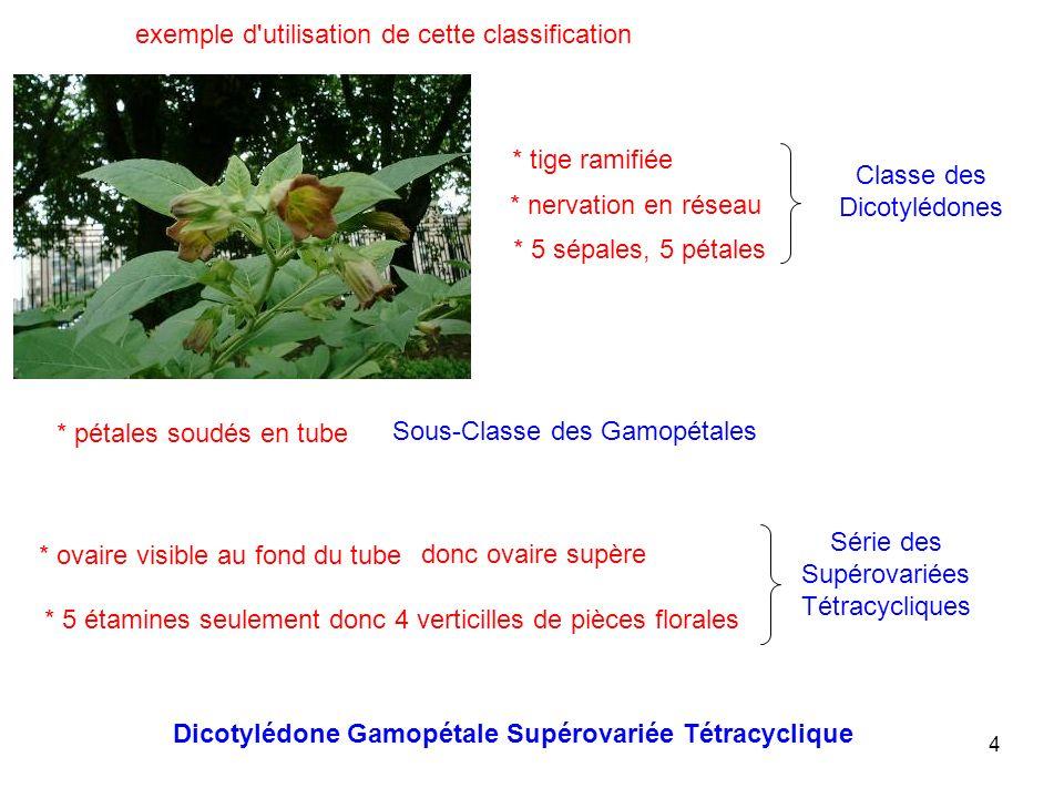 exemple d utilisation de cette classification