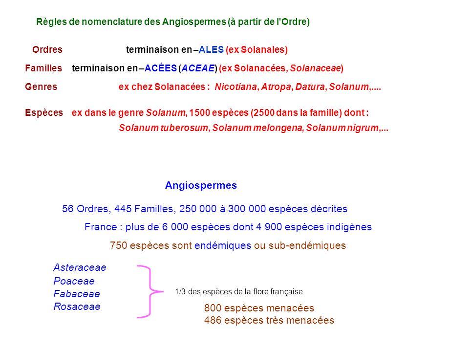 56 Ordres, 445 Familles, 250 000 à 300 000 espèces décrites