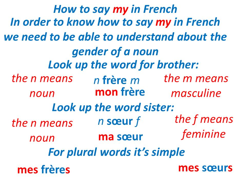 How to say my in French In order to know how to say my in French we need to be able to understand about the gender of a noun.