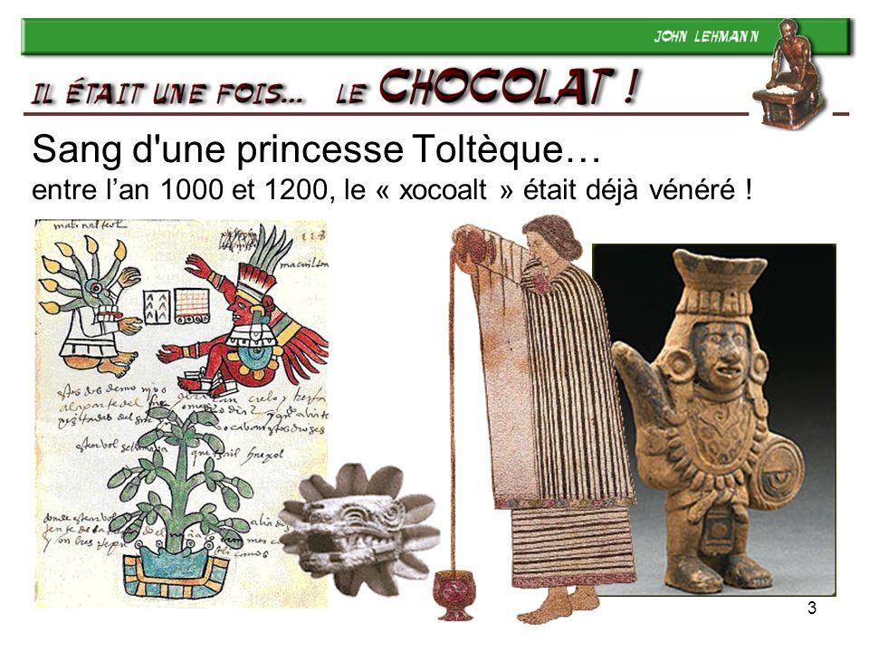Sang d une princesse Toltèque… entre l'an 1000 et 1200, le « xocoalt » était déjà vénéré !