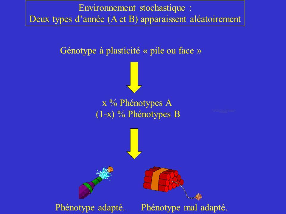 Environnement stochastique :