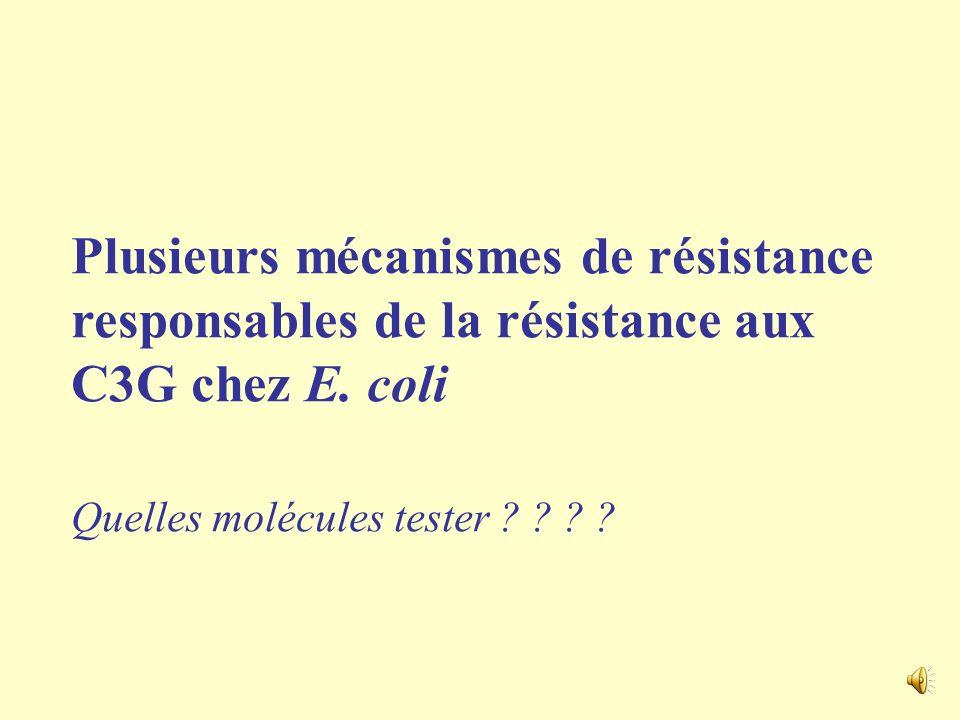 Plusieurs mécanismes de résistance responsables de la résistance aux