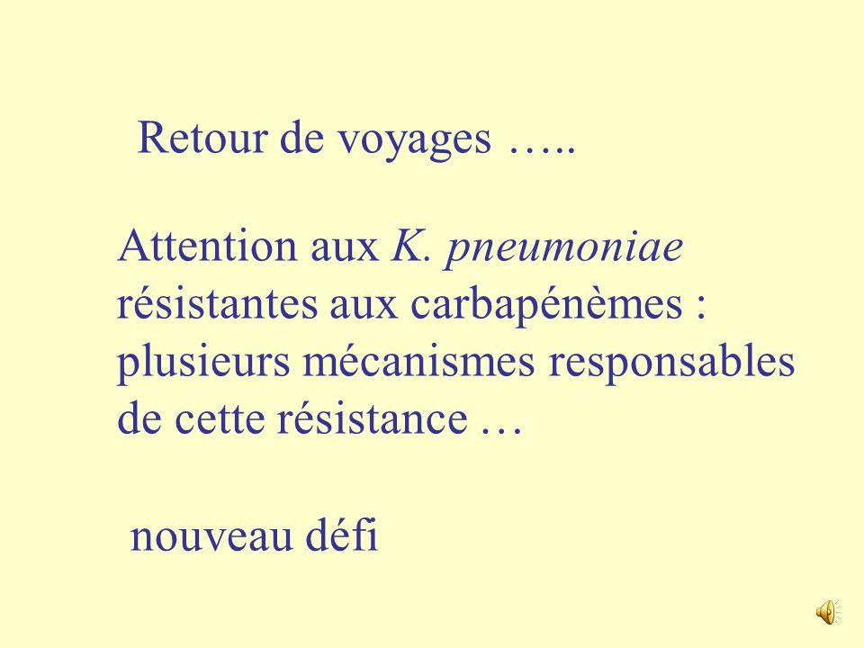 Retour de voyages ….. Attention aux K. pneumoniae résistantes aux carbapénèmes : plusieurs mécanismes responsables de cette résistance …