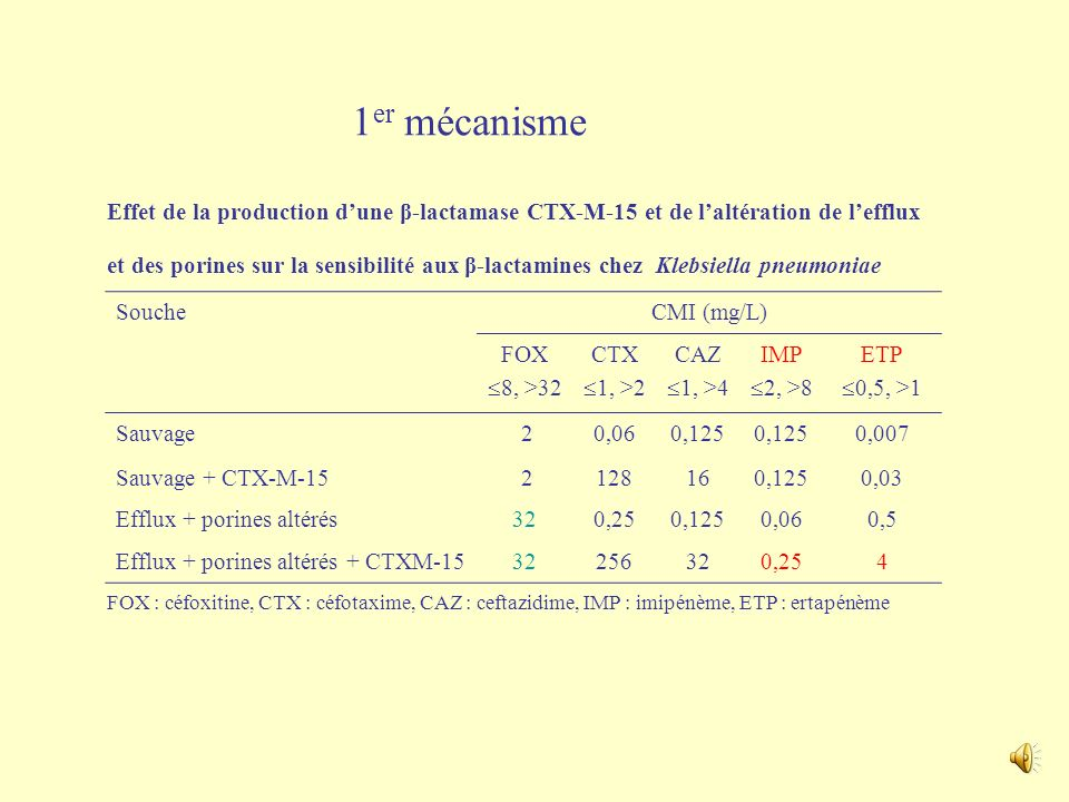 1er mécanisme Effet de la production d'une β-lactamase CTX-M-15 et de l'altération de l'efflux.