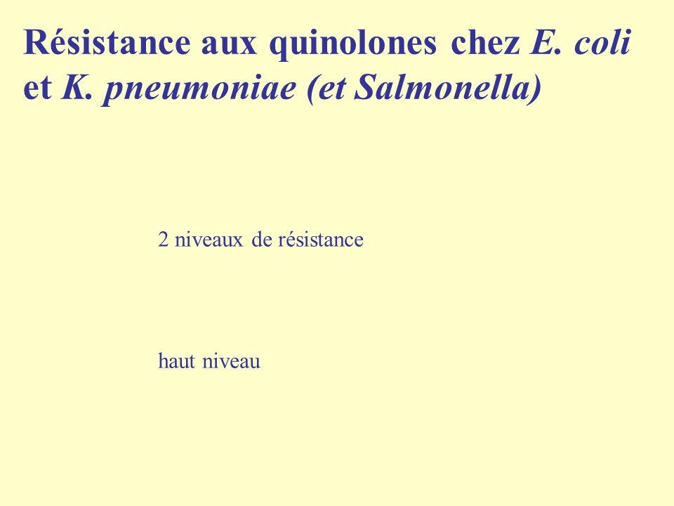 Résistance aux quinolones chez E. coli et K. pneumoniae (et Salmonella)