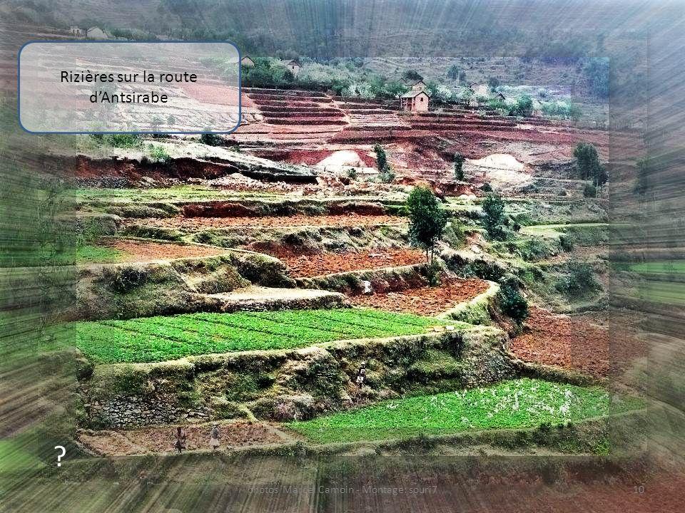 Rizières sur la route d'Antsirabe