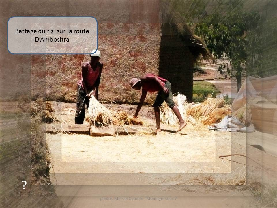 Battage du riz sur la route D'Ambositra