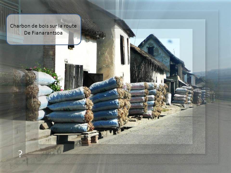 Charbon de bois sur la route De Fianarantsoa