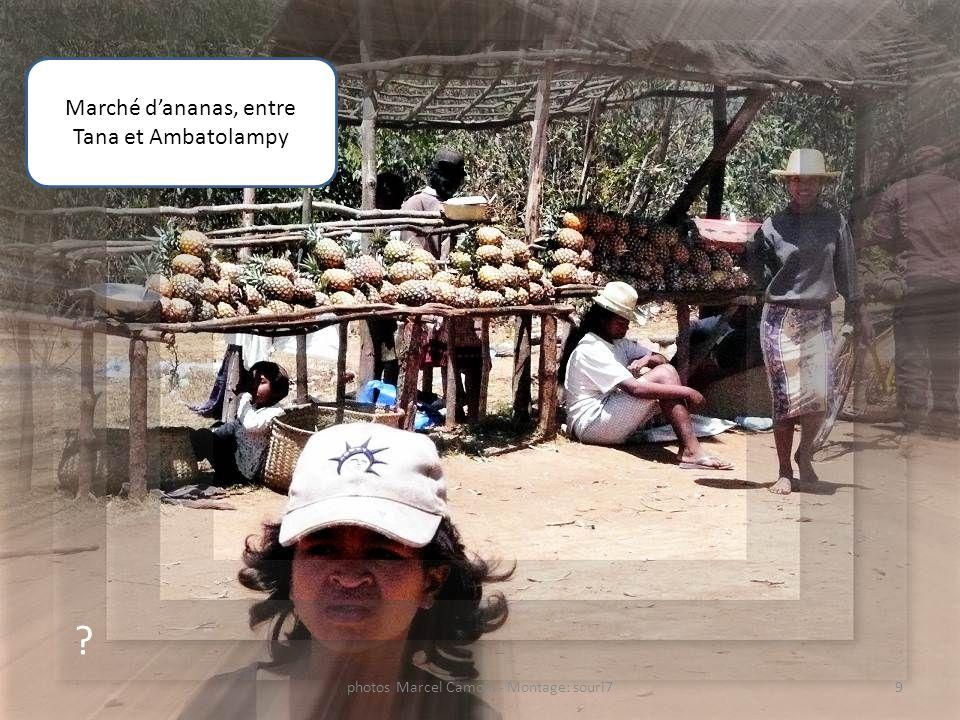 Marché d'ananas, entre Tana et Ambatolampy