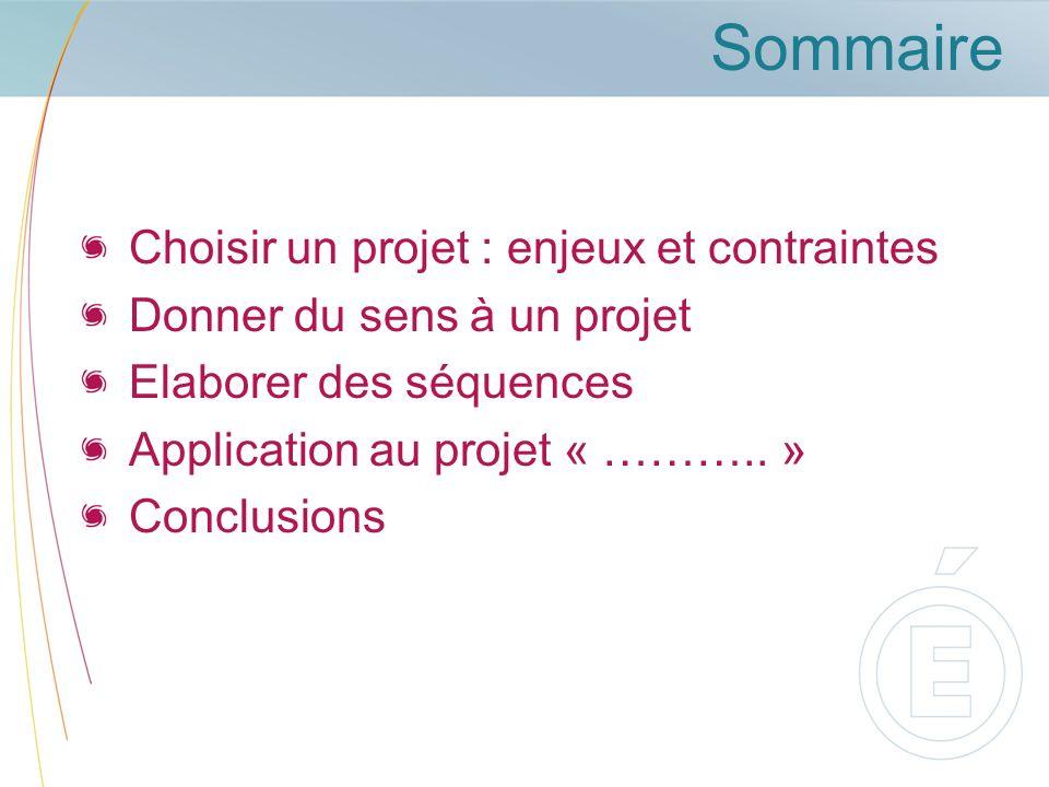 Sommaire Choisir un projet : enjeux et contraintes