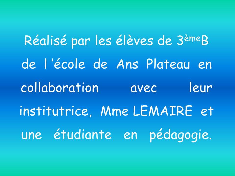 Réalisé par les élèves de 3èmeB de l 'école de Ans Plateau en