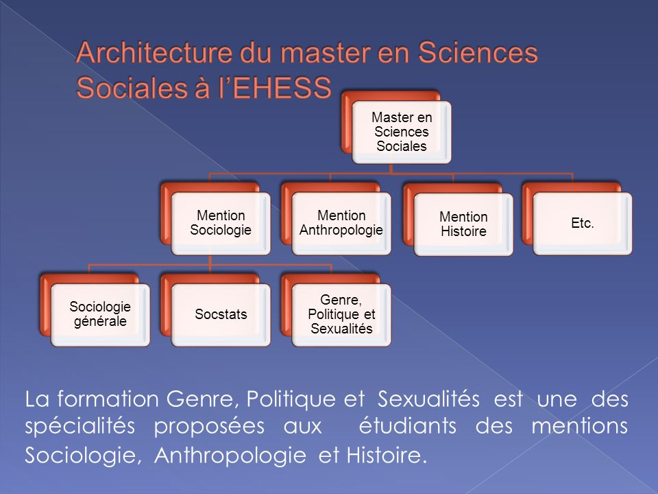 Architecture du master en Sciences Sociales à l'EHESS