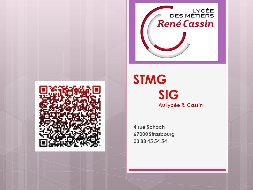 STMG SIG Au lycée R. Cassin