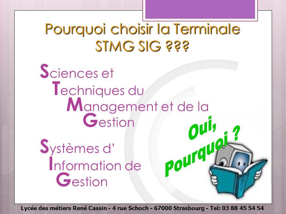 Pourquoi choisir la Terminale STMG SIG