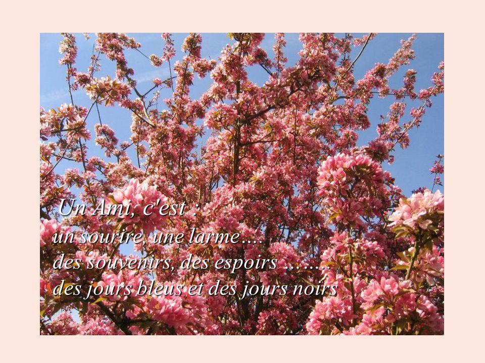 Un Ami, c est : un sourire, une larme…. des souvenirs, des espoirs ……..