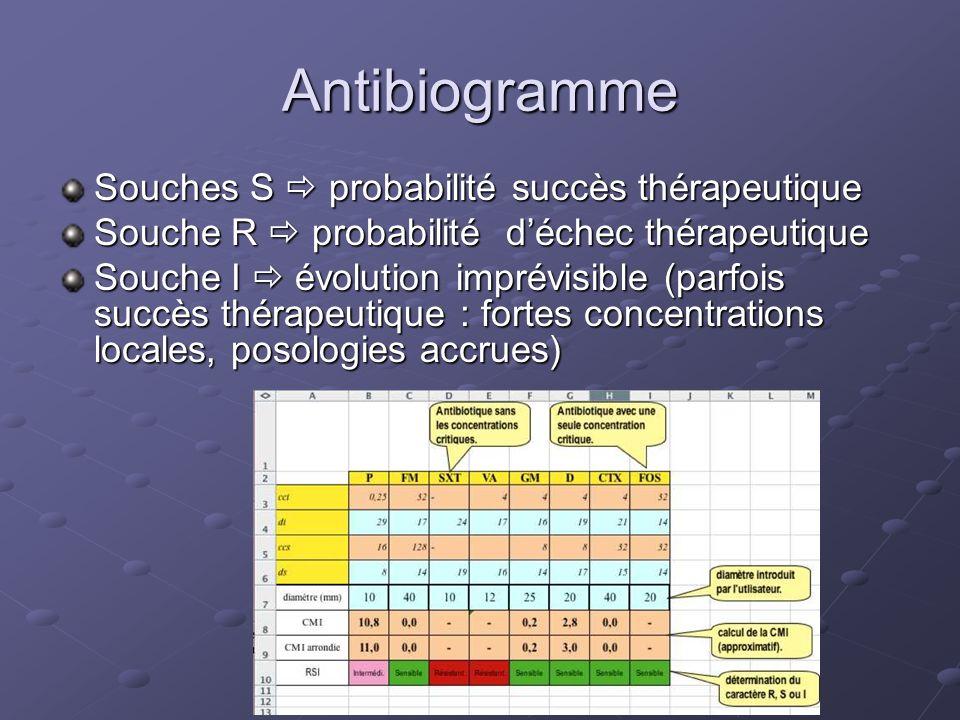 Antibiogramme Souches S  probabilité succès thérapeutique